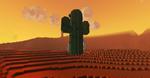 Lair Cactus