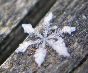 File:Winter.jpeg