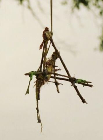File:True-Detective-Wikia S01-E01 Clue Cajun-bird-trap Dora 02.jpg