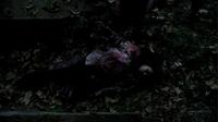 Luna's Death