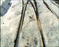 Thumbnail for version as of 20:08, February 10, 2011