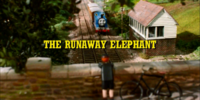 The Runaway Elephant/Gallery