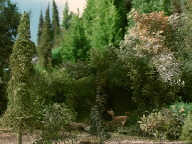 File:Henry'sForest15.png
