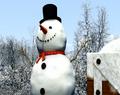 Thumbnail for version as of 21:20, November 16, 2013