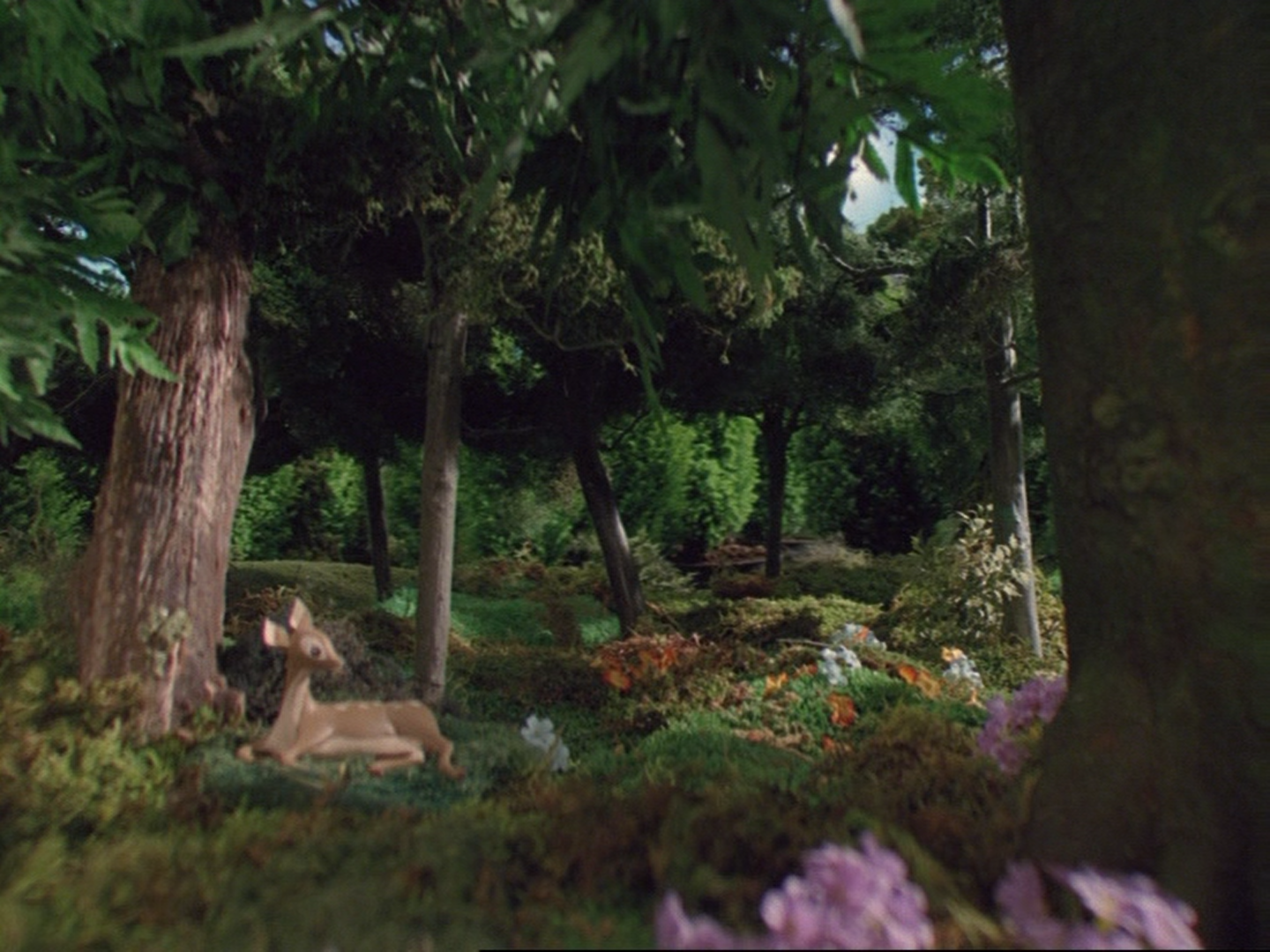 File:Henry'sForest58.png