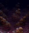 Dark path 8