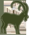 Gomera insignia