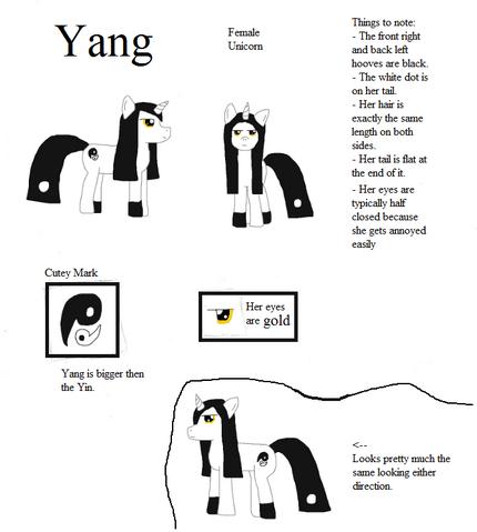 File:Profile - Yang.png