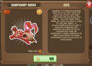 Roadrunner Bunny 1 (Info)