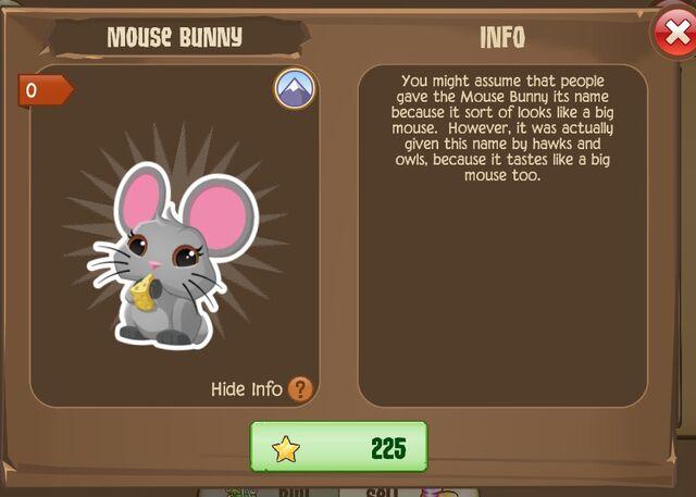 File:Mouse Bunny 1 (Info).jpg