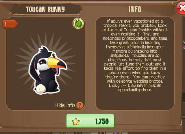 File:Toucan Bunny 1 (Info).jpg
