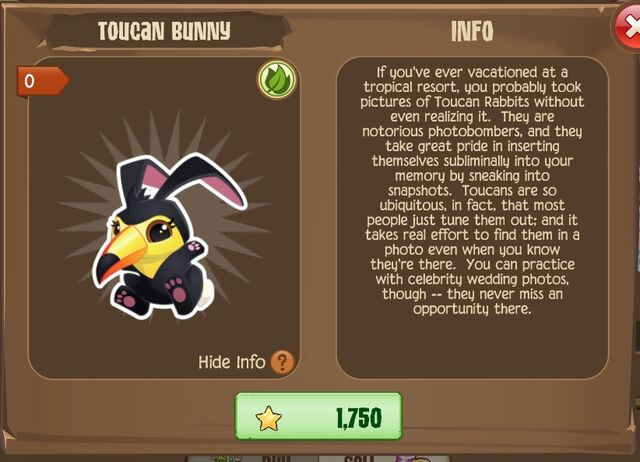 File:Toucan Bunny 2 (Info).jpg