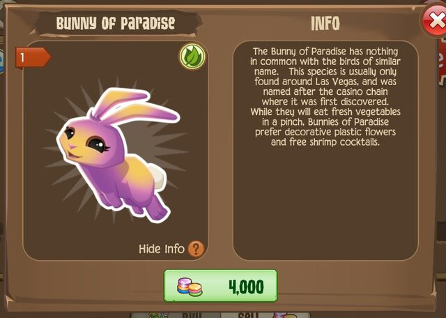 File:Bunny of Paradise 2 (Info).jpg