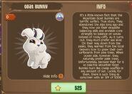 Goat Bunny 1 (Info)