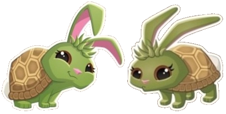 File:Turtle Bunny (Icon).png