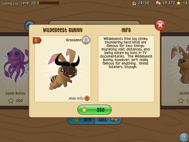 File:Another Wildebeest.jpg