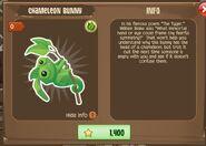 Chameleon Bunny 1 (Info)