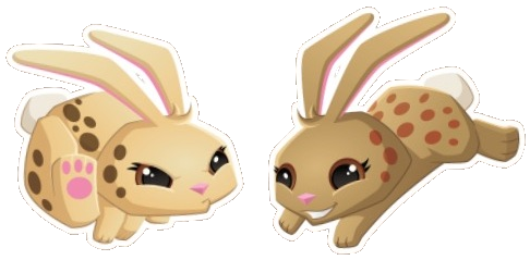 File:Leopard Bunny (Icon).png