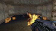 Turok Evolution Weapons - Shotgun (10)