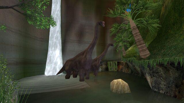 File:Animalia (58).jpg