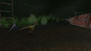 Turok Evolution Wildlife - Compsognathus (9)