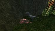 Turok Evolution Wildlife - Compsognathus (2)