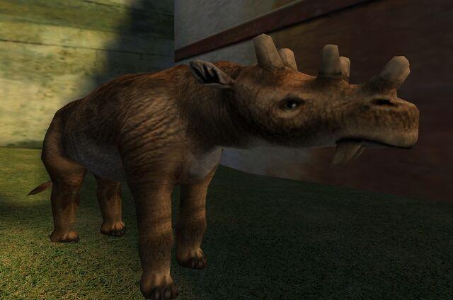 File:Zoo Animals (PC) (3).jpg