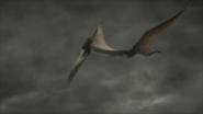 Hatzegopteryx-3
