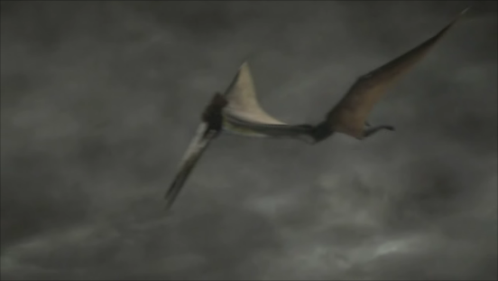 File:Hatzegopteryx-3.png