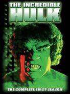 Incredible Hulk - The Complete First Season