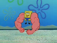 MuscleBob BuffPants 1