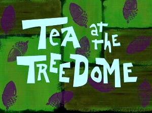 File:Tea at the Treedome.jpg