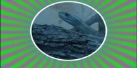 Snake-a-Rooney