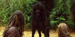 250px-Sam wolf form