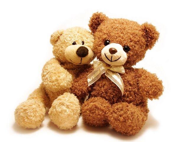 File:Teddy (3).jpg