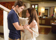 Breaking-dawn-pattinson-stewart-hug
