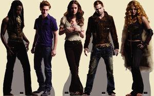 Twilight standups 555