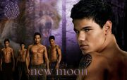 New-Moon-Wallpaper-Werewolves-twiligh7428188-1920-12001-1024x640