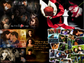 Thumbnail for version as of 11:04, October 30, 2013
