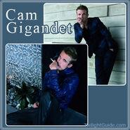 Cam-gigandet-1