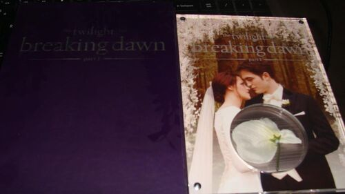 The Twilight Saga Breaking Dawn Part One Limited Edition