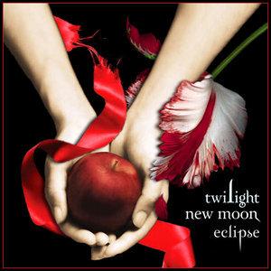 File:Twilight New Moon Eclipse.jpg
