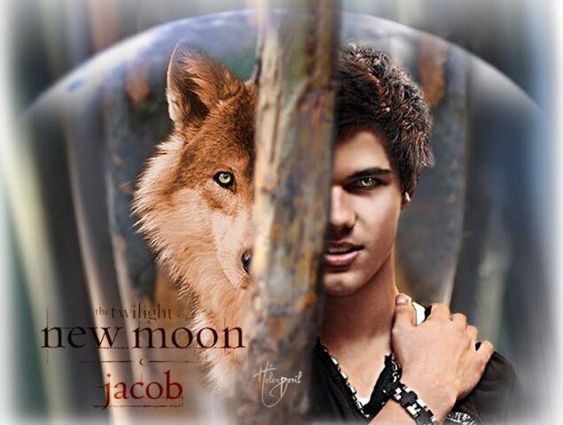 File:Jacob wolf.jpg