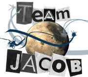 Team Jacob Design