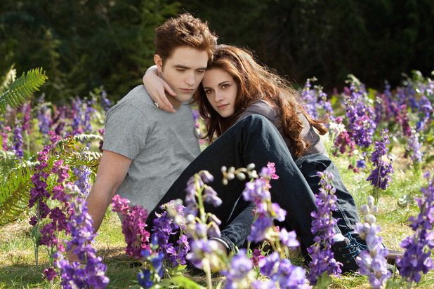 File:Edward Bella flowers.jpg