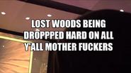 Lostwoods