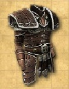 File:Armour - Chest - Hauberk with Reinforced Shoulder Plates - Inv.jpg