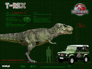 JP3 Sub ADULT Tyrannosaurus