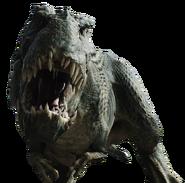 V rex