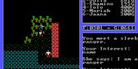 Ranger (NPC - Yew)